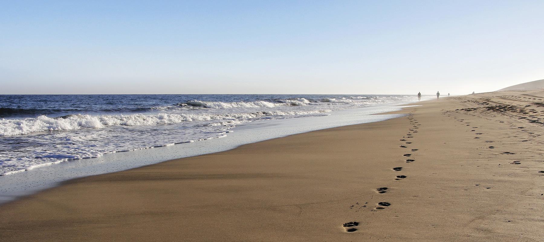 Schwangere beim Pilates am Strand (© chupacabra – stock.adobe.com)